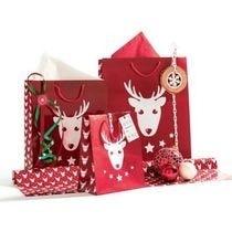 Kerst zakken