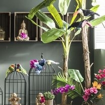 Decoratie lente Jungle Toekan